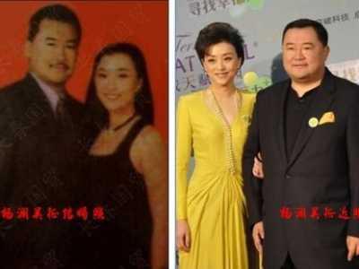 杨澜的第一任老公 杨澜老公吴征简介和照片