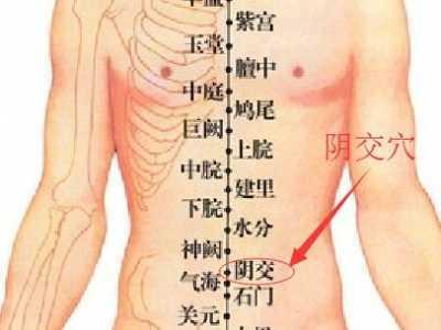 阴道穴位图 阴交穴位的准确位置图