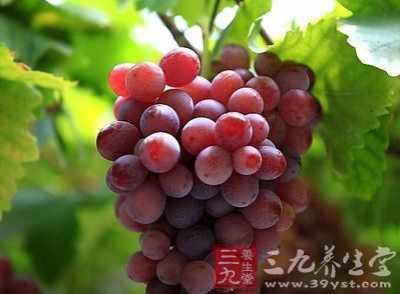 什么水果养胃 这六大水果来帮你保护胃气