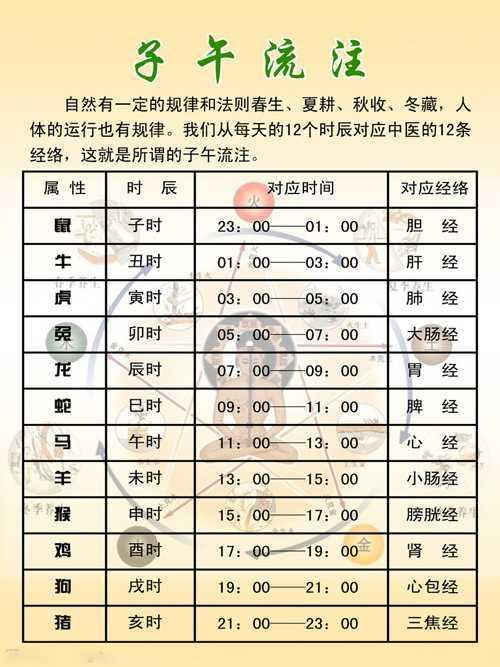 十二个月的生肖对照表 十二生肖对应的时辰图片