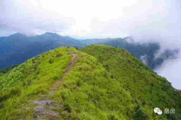 野猪嶂,海拔1293米,位于河源龙川县上坪,细坳镇之间,是龙川第二