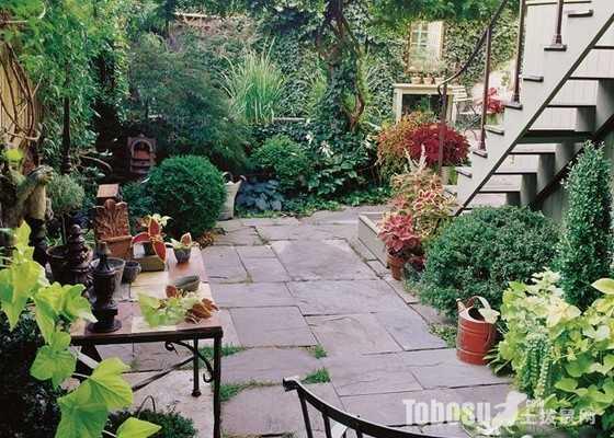 别墅庭院种什么树好 别墅前后院子里种什么植物好