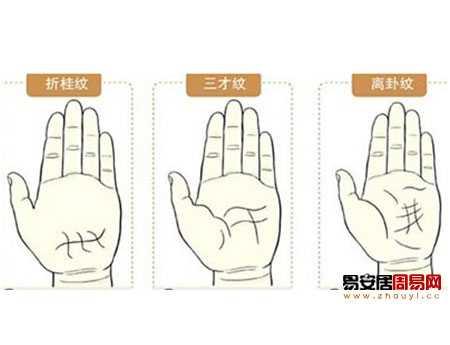 手相天纹_华盖纹图解手相 最罕见的掌纹手相算命图解 - 风水 - 中天女性网
