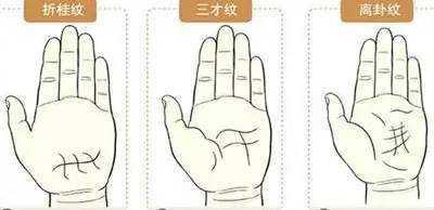 手相天纹_金花印纹手相 最全最罕见的手相掌纹图解 - 风水 - 中天女性网